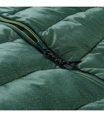 548 - Mallard green