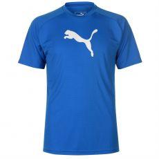 Pánské triko Liga Short Sleeve Puma