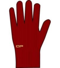 Pánské rukavice ALPINE PRO