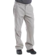 Pánské kalhoty SALAD ALPINE PRO