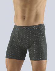 Boxerky s delší nohavičkou 74118-DxGDYM GINA
