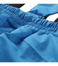 674 - Blue aster